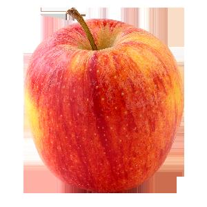 Domaine Darmandieu, pomme Royal Gala en vente et à cueillir