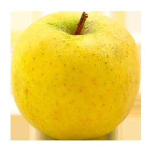 Domaine Darmandieu, pomme Chanteclerc en vente et à cueillir