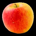 Domaine Darmandieu, pomme Pinova en vente et à cueillir