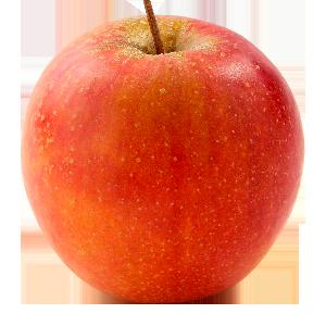 Domaine Darmandieu, pomme Rubinette en vente et à cueillir