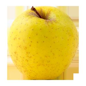 Domaine Darmandieu, pomme Golden en vente et à cueillir