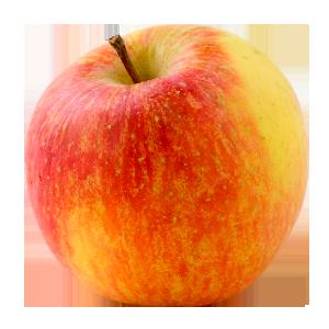 Domaine Darmandieu, pomme Daly class en vente et à cueillir